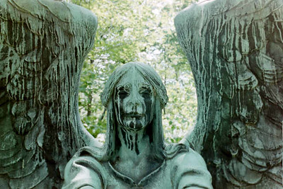 Haserot Angel